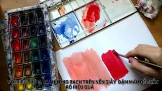 Download Một số kĩ thuật màu nước cơ bản Video