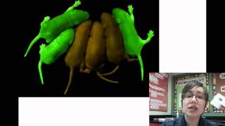 Download Introduction to Biotechnology Video