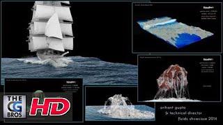 Download CGI & VFX Showreels: ″Fluids Showcase 2014″ - by Arihant Gupta Video