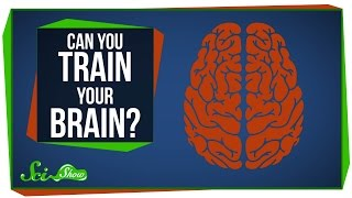 Download Can You Really 'Train' Your Brain? Video