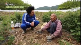 Download [윤택한 여행] 경북 예천, 103세 농부 할아버지를 만나다 채널A 신대동여지도 37회 Video