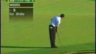 Download Tiger Woods impressions Golf! Hole in One Video