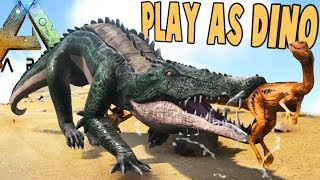 Download IT'S BACK! PLAY AS DINO SERVER PLAYER HUNTING! - Ark Survival Evolved Modded Gameplay Video