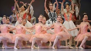 Download In the Studio: Learning Coppélia Video
