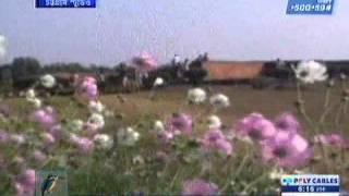 Download কুমিল্লা পর্যটন tourism, Comilla Porjoton Shilpo, Shalbon Bihar, Maasranga TV 27.1.14 imrul ইমরুল Video