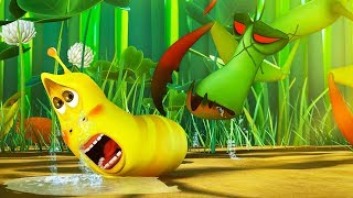Download LARVA - BABY LARVA DANGER | Cartoon Movie | Cartoons For Children | Larva Cartoon | LARVA Official Video