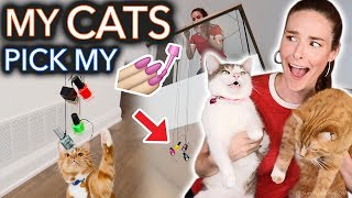 Download My Cats Pick My Nail Polish (extreme) Video