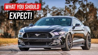 Download What You SHOULD EXPECT When BUYING a 2015-2018 Mustang GT Video