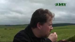 Download Székely Gps Video