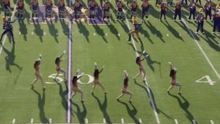 Download Miles College Purple Marching Machine halftime vs Univ. West Georgia 2016 Video