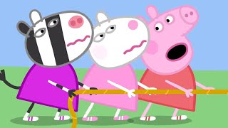 Download Peppa Pig Official Channel | Peppa Pig's Sports Day Video