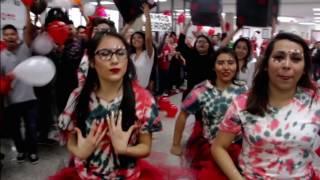 Download Springdale High School Class of 2016 Lip Dub Video