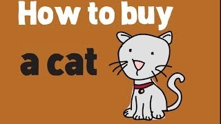 Download How to Buy a Cat? Buying a Cat and Kittens Tips Video