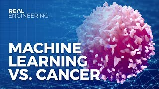 Download How Machine Learning is Fighting Cancer Video