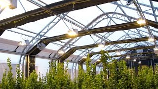 Download 30' x 80' WeatherPort GrowPort™ - Automated Light Deprivation Greenhouse in 4K! Video