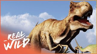 Download When Dinosaurs Ruled The Earth! | Wild Things Shorts Video