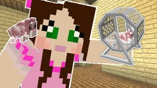 Download Minecraft: LITTLE PETS!! (HAMSTERS, HEDGEHOGS, & FERRETS!) Mod Showcase Video