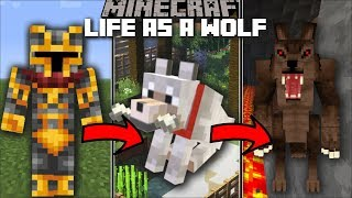 Download Minecraft LIFE AS A WOLF MOD / FIGHT AND PLAY WITH OTHER ANIMALS!! Minecraft Video