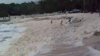 Download Dog is hit by foam wave Video