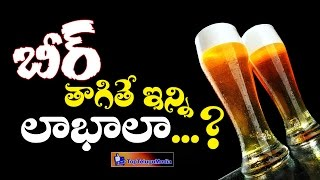 Download Health Benefits of Drinking BEER || 2016 Latest News and Updates || Top Telugu Media Video