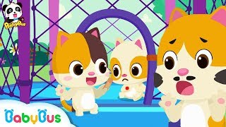 Download No No Trampoline Safety Song | Play Safe | Nursery Rhymes | Kids Safety Tips | Baby Songs | BabyBus Video