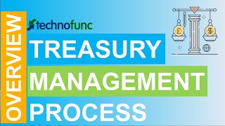 Download Introduction to Treasury Management Process Video