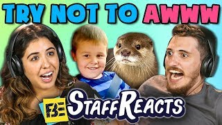 Download TRY NOT TO AWWW CHALLENGE #2 (ft. FBE Staff) Video