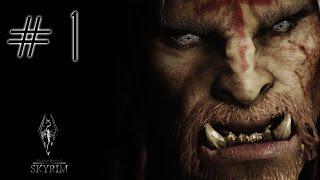 Download Role-Play Skyrim   Drackon   Cap 1   El chamán irascible Video