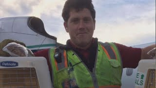 Download How Baggage Handler Richard Russell May Have Stolen Horizon Air Plane Video