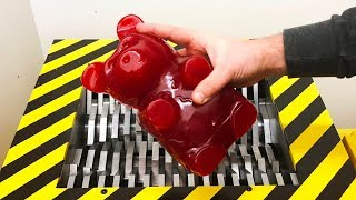 Download EXPERIMENT Shredding GIANT GUMMY BEAR (Five pound) Video