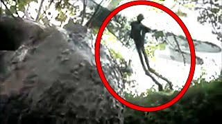 Download 5 Mysterious Creatures Caught on Camera Video