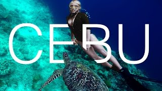 Download TOP 5 PLACES YOU HAVE TO SEE ON CEBU ISLAND | PHILIPPINES | TRAVEL GUIDE Video