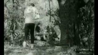 Download The Beach Boys - I Just Wasn't Made For These Times Video