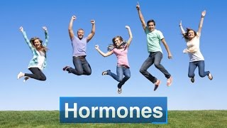 Download Hormones Video