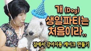 Download 앙리 생일파티에 초대된 막례 [박막례 할머니] Video