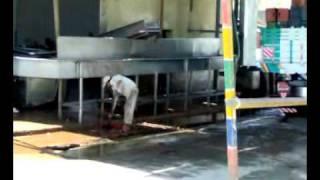 Download تلوث تصنيع الكاتشب والصلصة بمصنع هاينز - مصر 6 اكتوبر Video