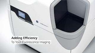 Download ZEISS Celldiscoverer 7: Your automated platform for live cell imaging Video