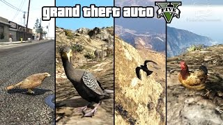 Download GTA 5 - Play as a Bird (Chicken, Seagull, Hawk, Crow & more) [PS4 & Xbox One] Video