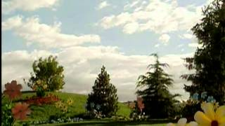 Download Teletubbies - The Lion And Bear (Original Sketch) Video