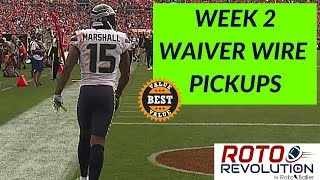 Download 2018 Fantasy Football - Week 2 Waiver Wire Players To Target Video