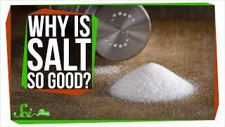 Download Why Does Salt Make Food Taste Better? Video