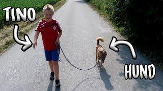 Download Mit TINO im TIERHEIM😱😂 + VERLOSUNG! Video