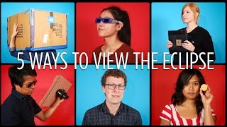 Download 5 Safe Ways To View The Eclipse | NPR's SKUNK BEAR Video