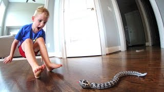 Download Dad Scares Son WITH A SNAKE! Video