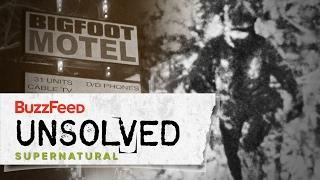 Download The Harrowing Hunt For Bigfoot Video
