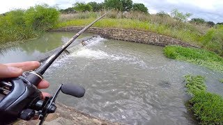 Download Found a NEW Pond In Texas! Video