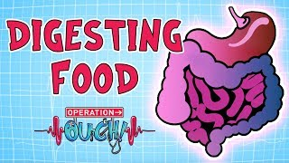 Download Operation Ouch - Digestion | Biology for Kids Video