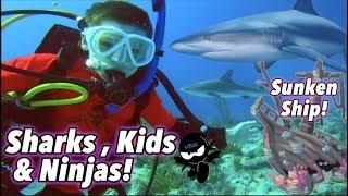 Download We swam with Sharks & found a Sunken Ship! (Bahamas) III Ninja Kidz TV Video