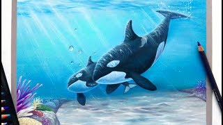 Download Time lapse drawing | Mother and baby orca/killerwhale with pastel pencils Video