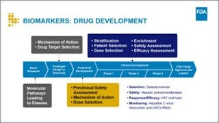Download How Biomarkers Can Improve the Drug Development Process Video
